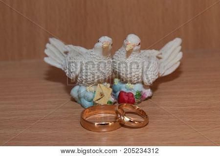 Wedding Gold Rings And Statue With Pigeons.