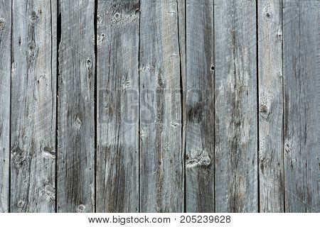 Wood texture made of old barn's plank