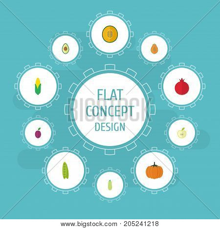 Flat Icons Bean, Jonagold, Alligator Pear And Other Vector Elements
