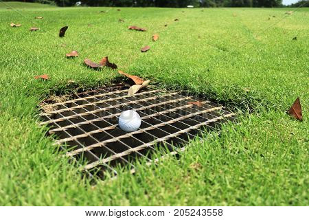 Golf Ball on the Drainage Screen in Fairway Immovable Obstruction Rule 24