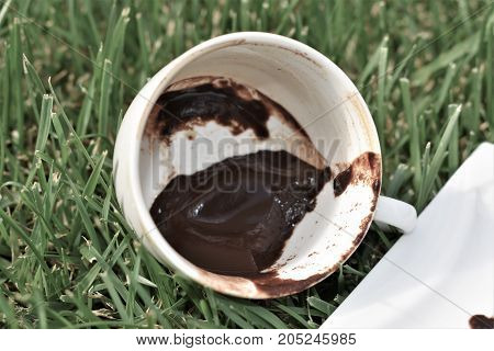 coffee grounds on the bottom of the mug. a cup on the grass. green meadow and white tableware. dirty dish. fortune telling, monkey cup, monkey background, funny and cute cup, green background