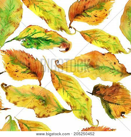 Hand drawing watercolor yellow autumn leaves seamless pattern
