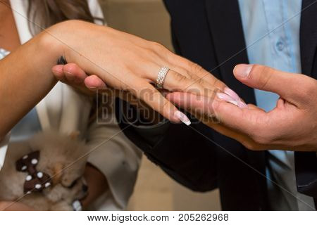 Holding hands of the groom and the bride with wedding rings close up