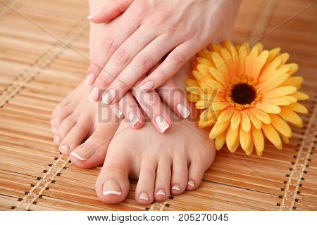 Care for beautiful woman legs with flower . Beautiful woman legs.