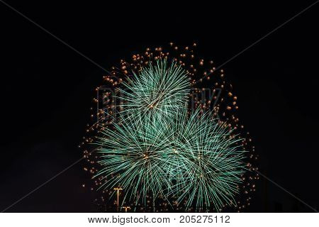 Color fireworks on dark black sky background