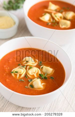 Homemade fresh cream of tomato soup with tortellini garnished with fresh oregano leaves photographed with natural light (Selective Focus Focus in the middle of the first soup)