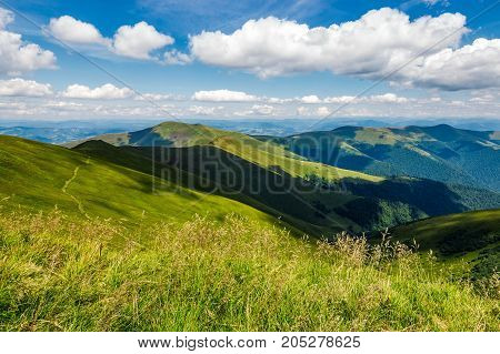 Grassy Meadow On Hillside In Summer