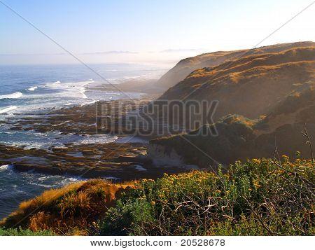Ocean Bluffs