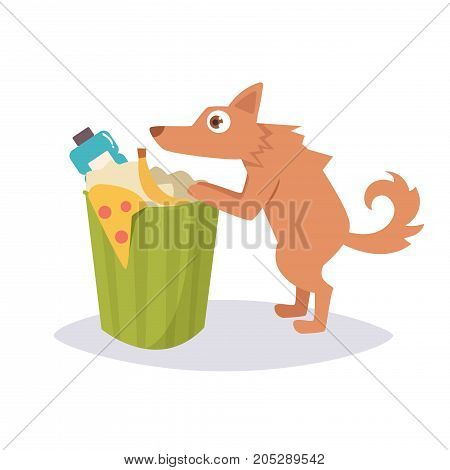 Stray dog rummaging in a trash can. Vector. Cartoon. Isolated art on white background. Flat