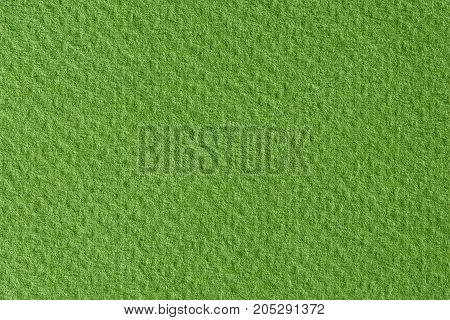 Green paper texture. High resolution photo of paper.