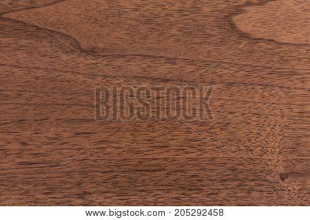 Walnut wood texture  close up. Hi res photo.