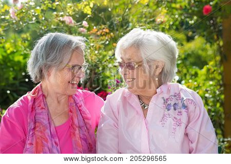 Two Cheerful Senior Women Relaxing In Garden