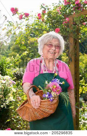 Senior Woman Standing With Basket In Garden