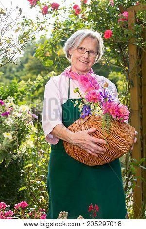 Senior Woman Holding Basket Full Of Flowers