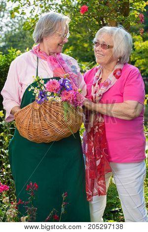 Two Senior Women Standing In Garden With Basket