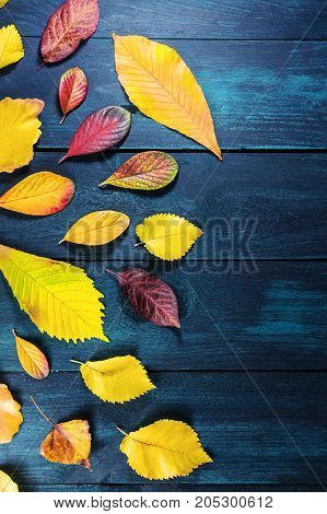 An overhead photo of autumn leaves on a dark rustic background with a place for text, a fall design template
