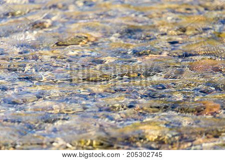 background of whitewater on the river . In a park in the nature