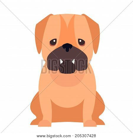 Funny cute red-haired pub-dog sitting flat vector isolated on white background. Lovely purebred dog illustration for animal friends and companions concepts, pet shop ad