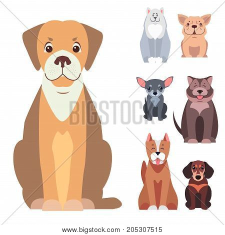 Cute doggies cartoon set sitting with smiling muzzle and hanging out tongue flat vector isolated on white. Lovely purebred pets illustration for vet clinic, breed club or shop ad