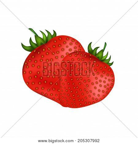 Ripe fresh red strawberries isolated on white. Summer sweet healthy fruit with outside seeds. Vector colorful illustration in flat style with two whole strawberries full of vitamins and minerals