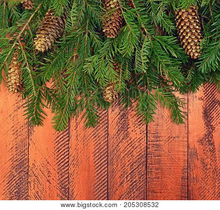 Wooden background. Christmas design - ornaments in a rural style. Golden cones and green tree branches on a bright wooden background. Decor with natural elements.