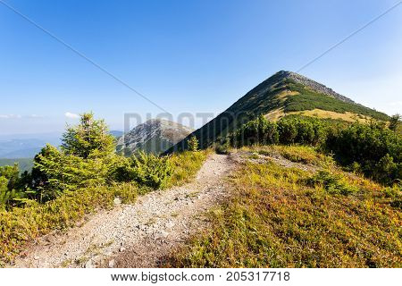 Carpathians a hiking trail along the Central Gorgan Mountains to Mount Sivulya V.