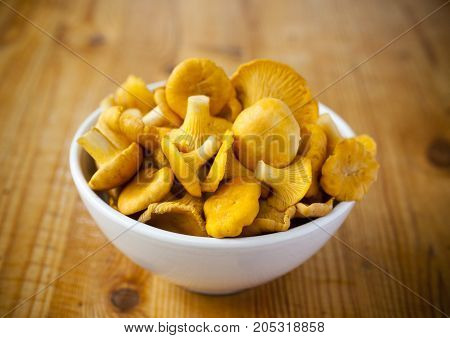 Raw mushrooms chanterelle in bowl on white green and brown background.