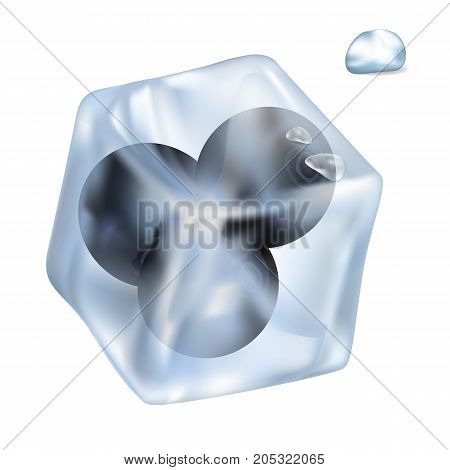 Frozen tasty blueberries in ice cube that slowly melts and shiny water drop isolated realistic vector illustration on white background.