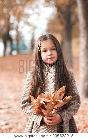 Cute baby girl 3-4 year old holding fallen leaves wearing stylish jacket in park. Looking at camera. Autumn season. Childhood.