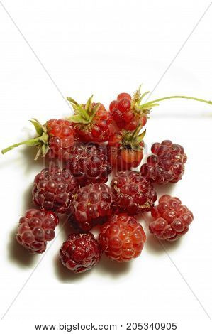 sweet raspberry to withe background. Food. Vegetable.