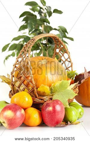 Medium size isolated orange pumpkins and fruits on white background