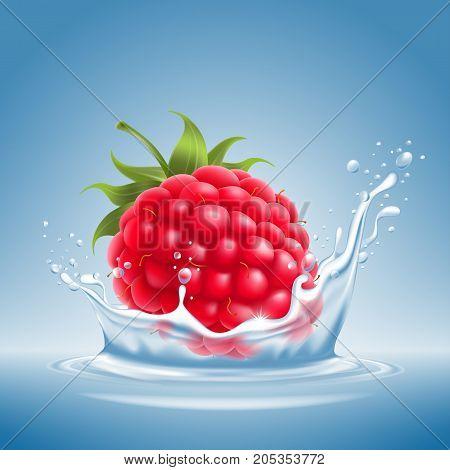 Raspberry In Water Splash