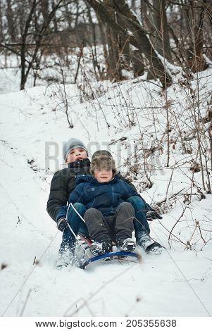 Children Sled In Winter In Fresh Air