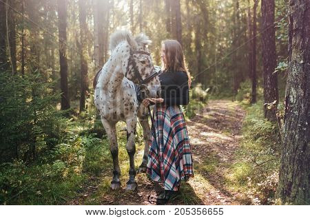 Young caucasian woman taking care of her horse, walking in forest. Horse is white in brown spot. Film effect