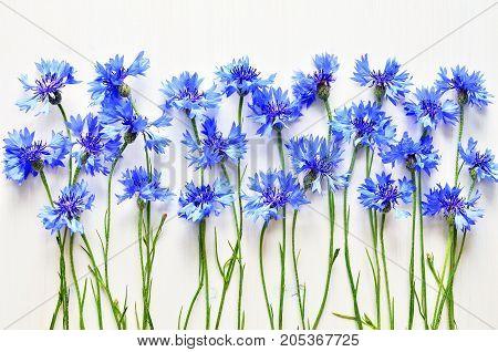 blue summer cornflowers over white wooden background
