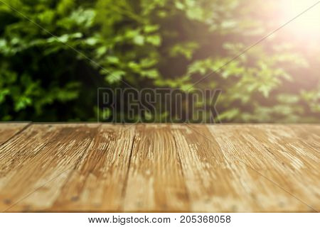 Empty Rustic Wood Table Top On Blurred Parsley  Background In The Garden. Can Montage Or Display You