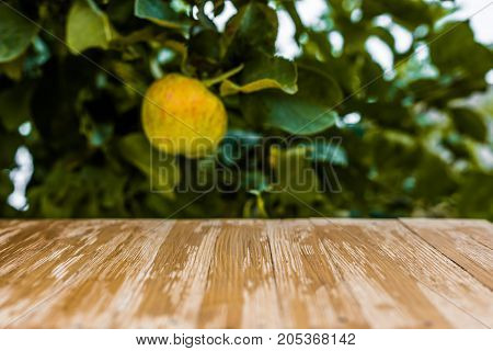 Empty Rustic Wood Table Top On Blurred Apples Background In The Garden. Can Montage Or Display Your