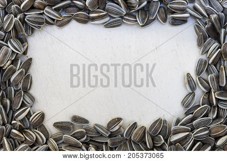 Textured frame or window using raw organic white and black freshly harvested sunflower seeds on white painted wooden rustic table with copy space