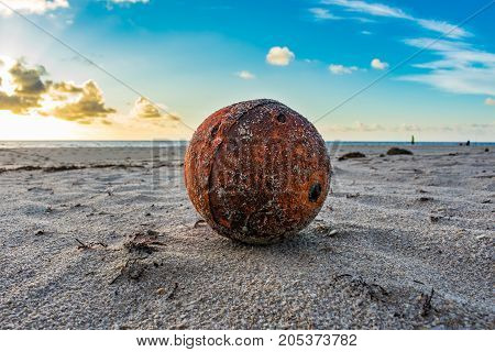 close up of a buoy washed up on a sandy beach on a summer morning