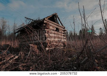 Old abandoned forest hut in autumn. horizontal shot