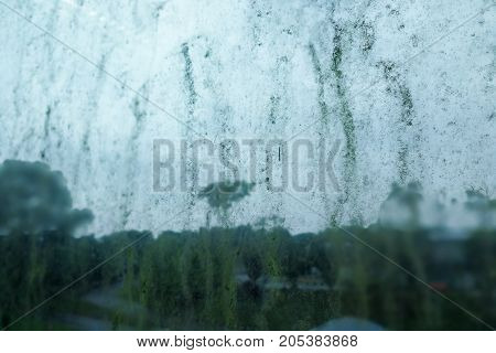 Dirty Unhygienic Mold Stain On Glass Window Because Dampness