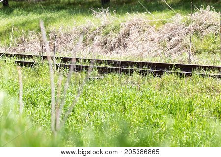 old railway grassed . In the park in nature