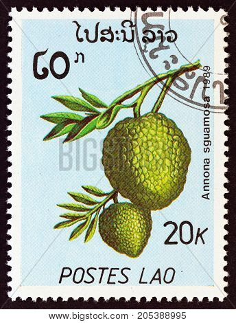 LAOS - CIRCA 1989: A stamp printed in Laos from the