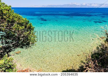 Seafloor is visible through turquoise transparent water and green vegetation on ground above.