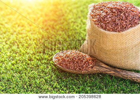 Red Thai Jasmine Rice In Spoon And Small Sack On Green Grass Background