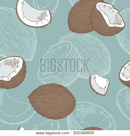 Coconut graphic color seamless pattern sketch illustration vector