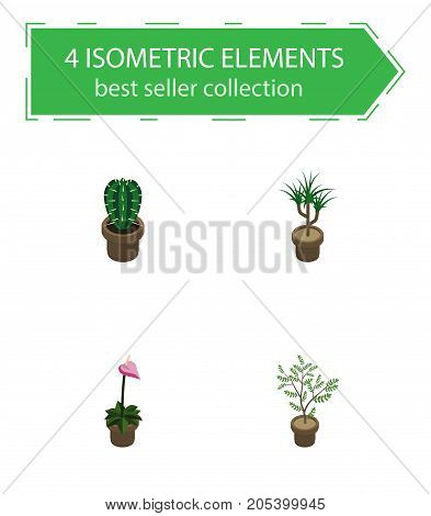 Isometric Houseplant Set Of Houseplant, Grower, Fern And Other Vector Objects