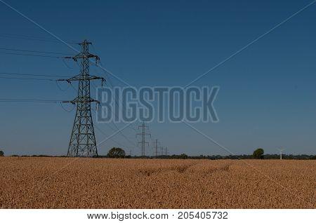 Power Lines Cross A Grain Field In Denmark