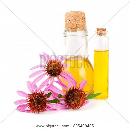 Essential oil of Echinacea purpurea isolated on white background.