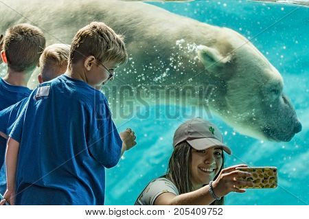 Asheboro North Carolina USA - September 20 2017: A girl takes a selfie with the polar bear swimming in the background as a boy looks on at the North Carolina Zoo.